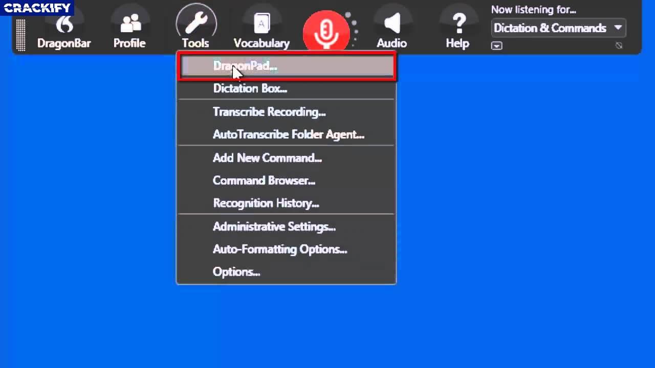 Nuance Dragon Professional Individual Screenshot