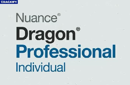 Nuance Dragon Professional Individual Logo