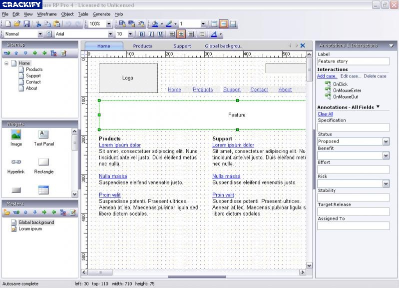 Axure RP Pro Team Enterprise Screenshot