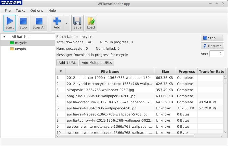 Bulk Image Downloader Screenshot