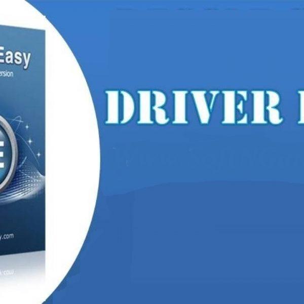 Driver Easy Professional Logo